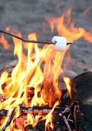 roasting marshmallow on a campfire