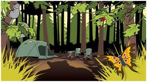 Forest Camping Scene